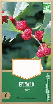 Erdbeerspinatsamen